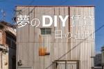 DIYhinodetop1