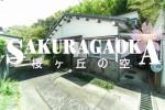 sakuragaoka001